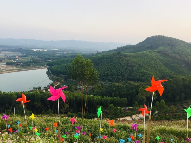 Gần 3.000 cây chong chóng được cắm tại vườn hoa để tạo ra một vẻ đẹp riêng ở mảnh đất Phủ Quỳ.