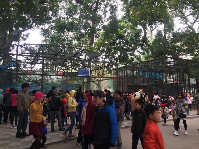 Nhiều gia đình đưa con nhỏ đến vườn thú Thủ Lệ để vui chơi (Ảnh: Nguyễn Trường).