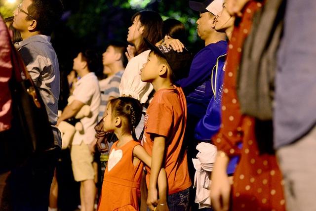 TPHCM: Độc đáo Thiên Hạc Lửa chao liệng trong tiệc pháo hoa mừng năm mới - 20