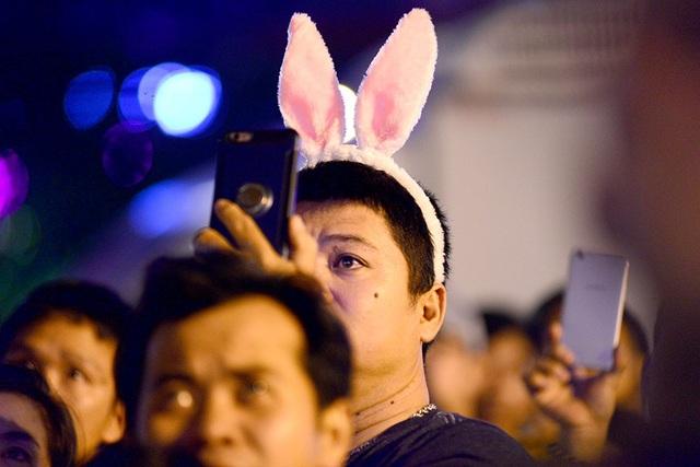 TPHCM: Độc đáo Thiên Hạc Lửa chao liệng trong tiệc pháo hoa mừng năm mới - 19