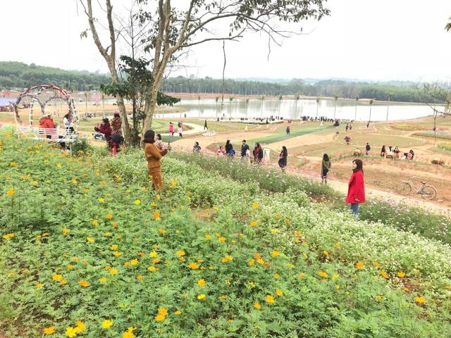 Thung lũng hoa Phủ Quỳ cũng là 1 địa điểm được các bạn trẻ chọn trong Tour du lịch cho những ngày nghỉ cuối tuần và nghỉ lễ.