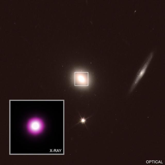 Tín hiệu từ một ngôi sao đang chết tố cáo lỗ đen là thủ phạm - Ảnh 2.
