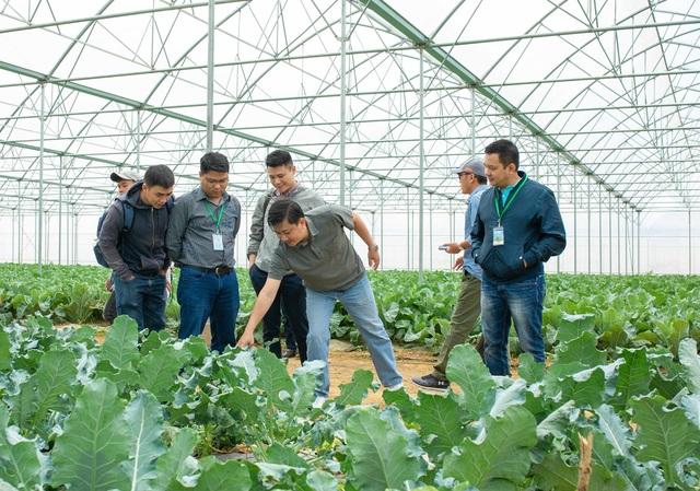 Hợp tác với Vineco, hơn 800 hộ nông dân tham gia chuỗi sản xuất nông sản sạch  - Ảnh 2.