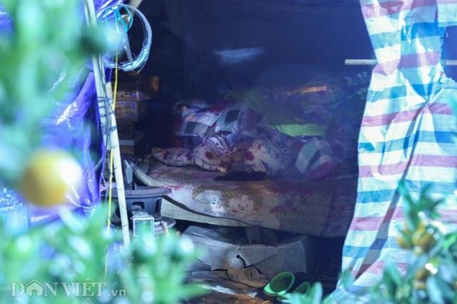 Trùm chăn thâu đêm trông đào, quất lộ thiên ở Hà Nội - Ảnh 7.
