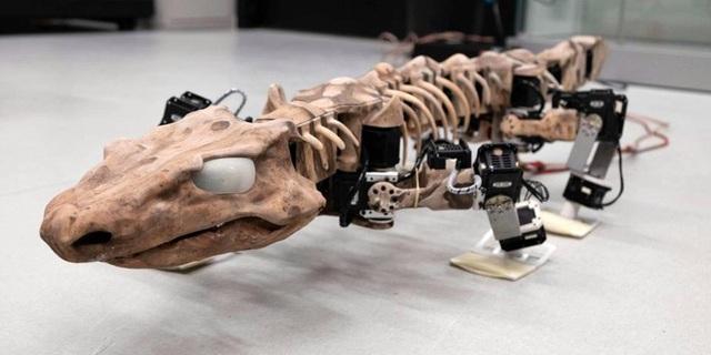 """""""Tái sinh"""" loài thằn lằn có niên đại 300 triệu năm đã tuyệt chủng - Ảnh 1."""