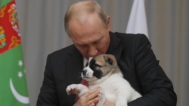 Món quà đặc biệt tổng thống Serbia tặng ông Putin - Ảnh 5.