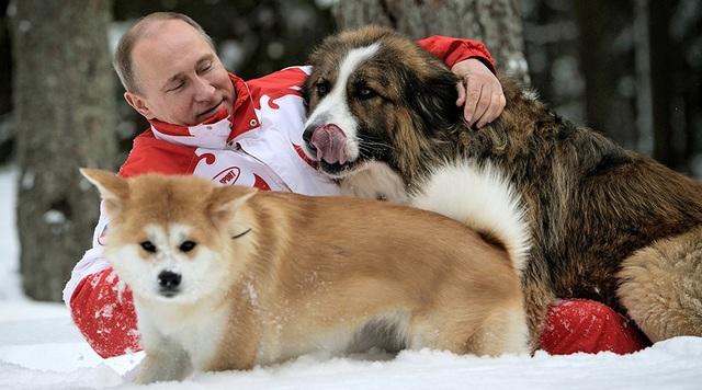 Món quà đặc biệt tổng thống Serbia tặng ông Putin - Ảnh 6.