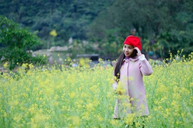 Bé gái đọ dáng cùng rừng hoa vàng đang khoe sắc