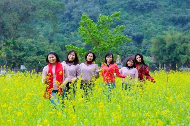 Mọi người cùng hòa mình vào thiên nhiên tươi đẹp, sắc hoa vàng rực hiếm có giữa tiết trời Đông lạnh thấu xương.