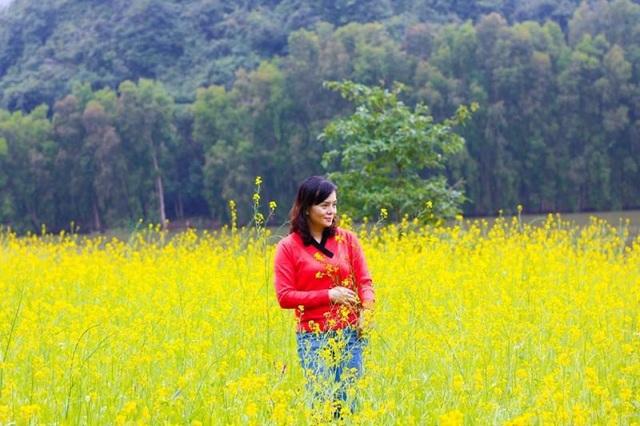 Những khung hình nổi bật giữa nền hoa vàng bạt ngàn đang lung linh trước gió.