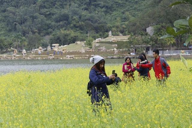 Dịp nghỉ Tết dương lịch 2019, mặc dù thời tiết ở Ninh Bình rét thấu xương nhưng hàng trăm du khách vẫn kéo nhau về Thung Nham để được chiêm ngắm vườn hoa cải có 1 - 0 2 lần đầu tiên xuất hiện ở Ninh Bình.