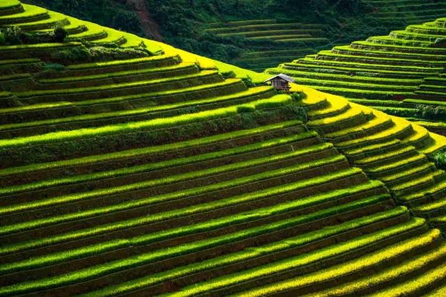 Nếu chỉ được chọn một điểm đến ở Đông Nam Á, bạn nên đi đâu? - 5