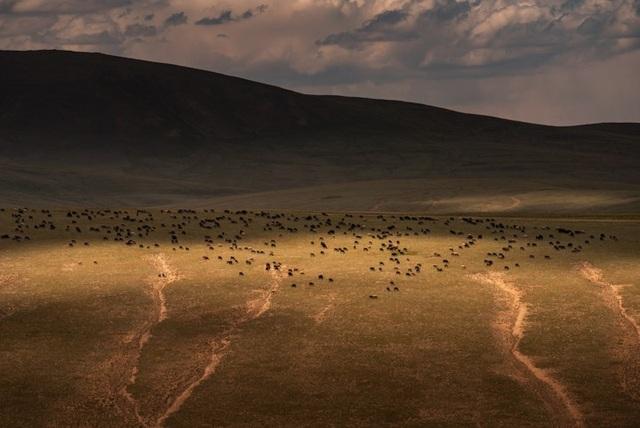 """Thiên nhiên hùng vĩ ở Kyrgyzstan đẹp đến """"nghẹt thở"""" - 3"""