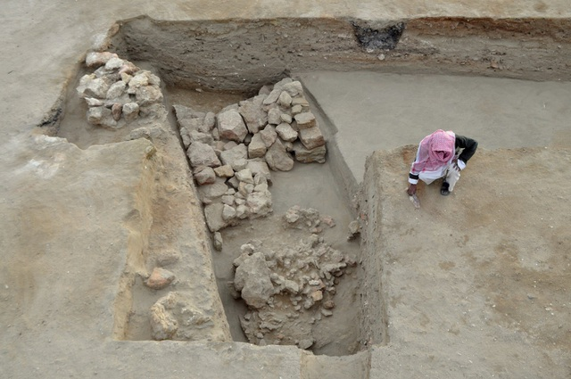 Phát hiện pháo đài Ai Cập 2.300 tuổi bảo vệ cảng trung chuyển voi chiến thời cổ đại  - Ảnh 1.