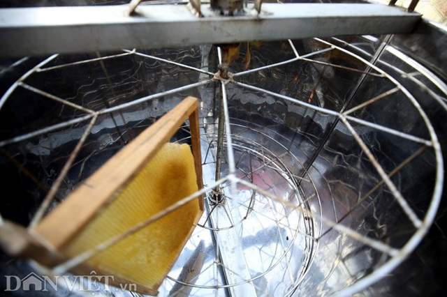 Nghề lạ ở Hà Giang: Nuôi ong trên đá - 11