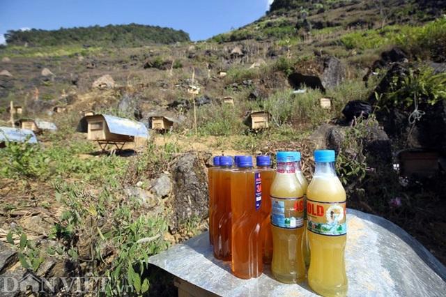 Nghề lạ ở Hà Giang: Nuôi ong trên đá - 14