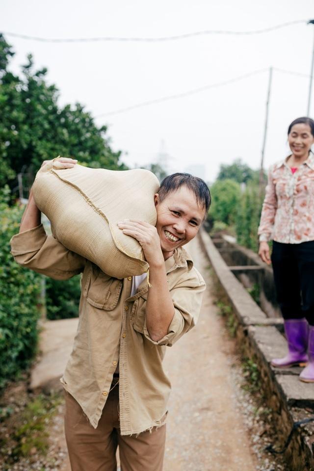 Người dân Phường Phú Diễn thu hoạch bưởi cho Tết Nguyên đán Kỷ Hợi - Ảnh 11.