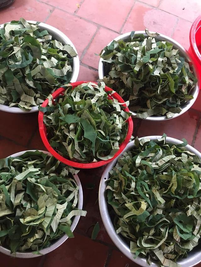 Loại lá mọc tràn ao bùn Việt Nam, 400 ngàn đồng/kg, chị em ưa dùng để giữ eo - 2