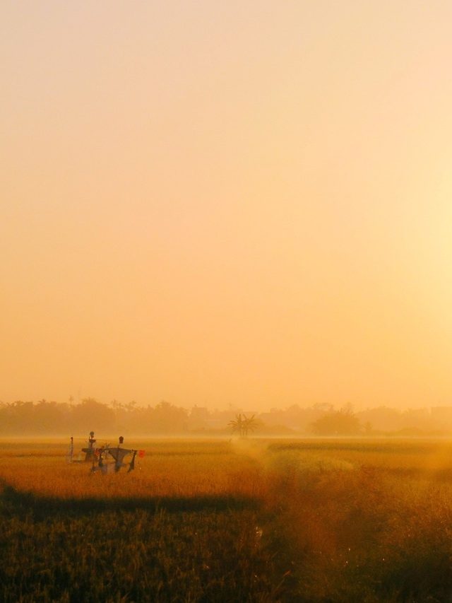Những góc ảnh đẹp của nhiếp ảnh gia Việt Nam tại giải ảnh quốc tế - 3