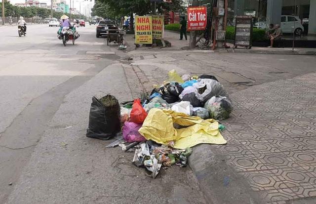 Hà Nội: Xem xét chuyển thùng rác gây ô nhiễm đi nơi khác - 4