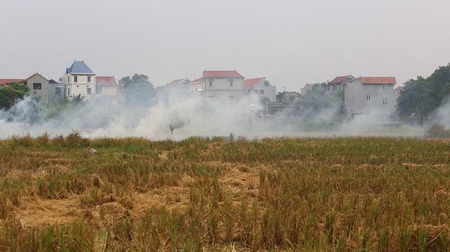 Khói đốt rơm rạ ngút trời ngoại thành Hà Nội - 1