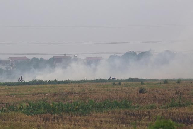 Khói đốt rơm rạ ngút trời ngoại thành Hà Nội - 11
