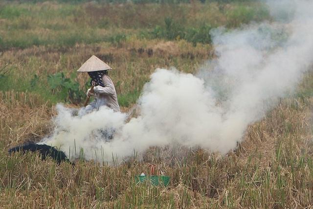Khói đốt rơm rạ ngút trời ngoại thành Hà Nội - 6
