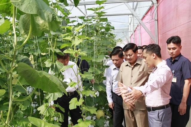"""Thủ tướng Lào thăm khu công nghệ cao, trang trại trồng rau """"thông minh"""" ở Đà Nẵng - 2"""