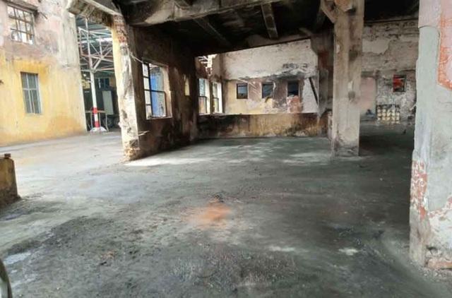 Hình ảnh bên trong Công ty Rạng Đông sau khi dọn sạch hàng nghìn tấn phế liệu - 11