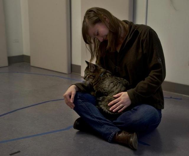 Không chỉ chó, mèo cũng có tình cảm với chủ nhân - 2