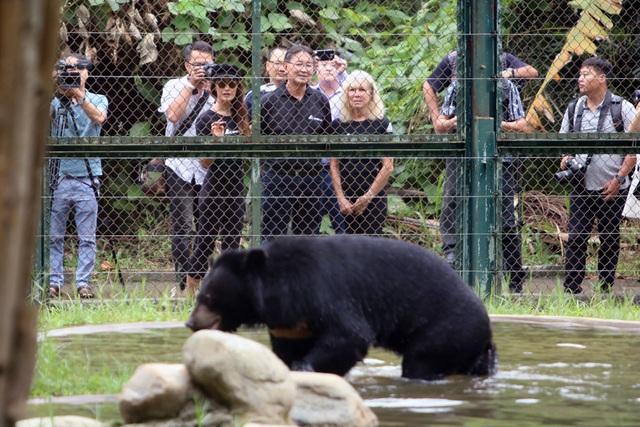 Minh tinh Maggie Q thăm mộ một con gấu ở Tam Đảo - 8