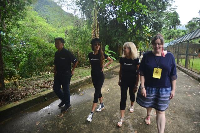 Minh tinh Maggie Q thăm mộ một con gấu ở Tam Đảo - 4