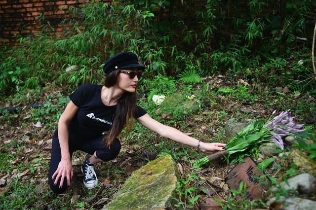 Minh tinh Maggie Q thăm mộ một con gấu ở Tam Đảo - 6