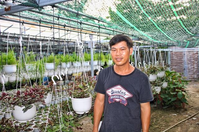 Đà Nẵng: Trồng hoa chậu mini công nghệ cao, kiếm bộn tiền - 3