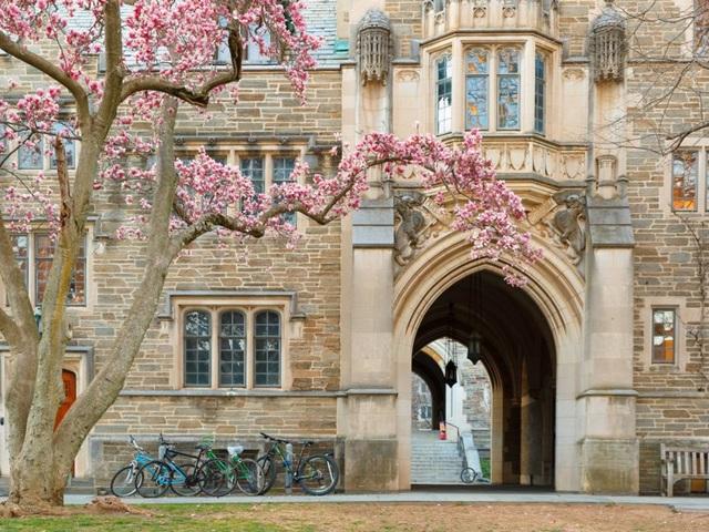 Sinh viên 15 trường đại học hàng đầu của nước Mỹ có mức lương bao nhiêu? - 5