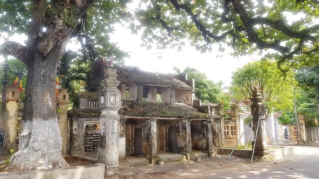 Ngôi chùa cổ có 2 cây di sản đầu tiên ở Ninh Bình - 2