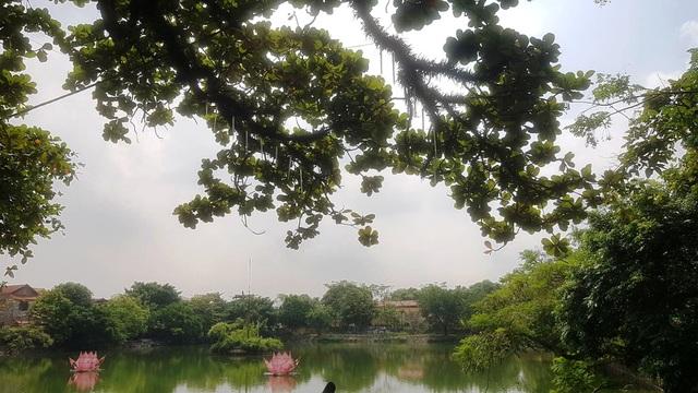 Ngôi chùa cổ có 2 cây di sản đầu tiên ở Ninh Bình - 6