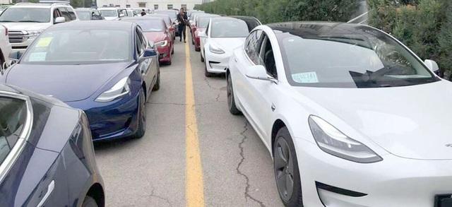 Người Trung Quốc mê mẩn xe Tesla - 2