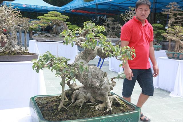 Mãn nhãn với vẻ đẹp kỳ dị của hàng trăm cây sanh bonsai ở Thanh Hóa - 7