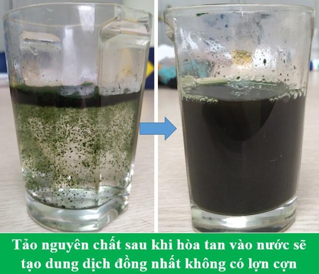 """Vì sao tảo Spirulinađược coi là """"Thực phẩm bảo vệ sức khỏe tốt nhất của loài người trong thế kỷ 21""""? - 8"""