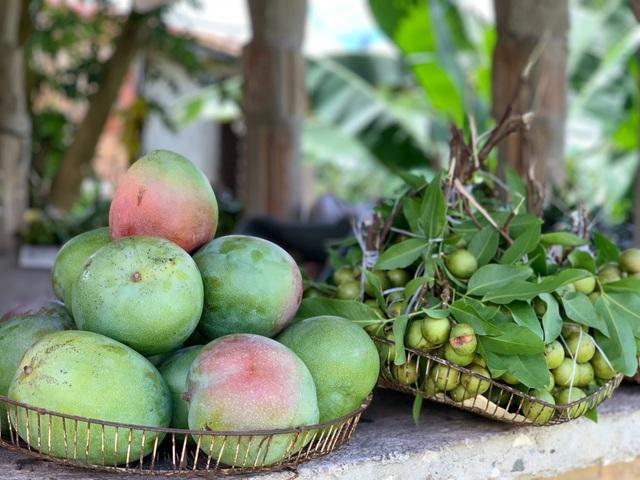Trải nghiệm khó quên của du khách Việt ở Cuba, hàng hóa khan hiếm và đắt đỏ - 8