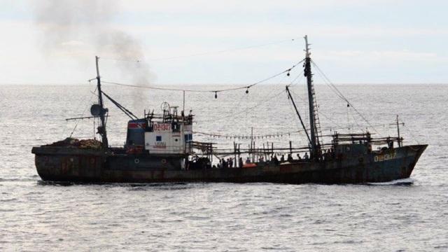 """""""Canh bạc"""" đánh bắt xa bờ của tàu cá Triều Tiên vì Trung Quốc cạnh tranh ngư trường - 1"""