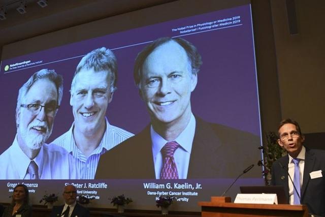 Nobel Y học 2019 mở đường cho phương pháp mới điều trị ung thư    - 1