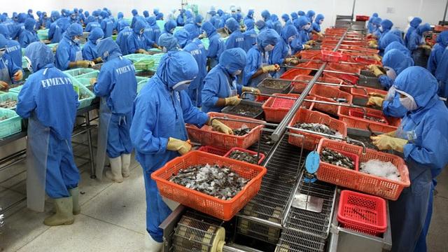 Trung Quốc đóng lối nhỏ, tôm cá rớt giá, dân Việt khóc ròng - 2