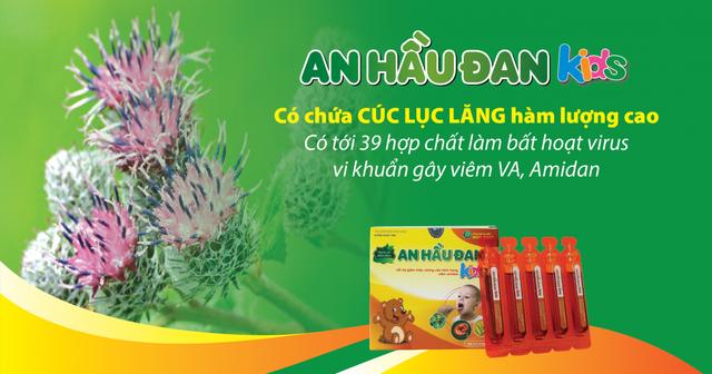 An Hầu Đan Kids sở hữu thảo dược vàng cúc lục lăng - 1