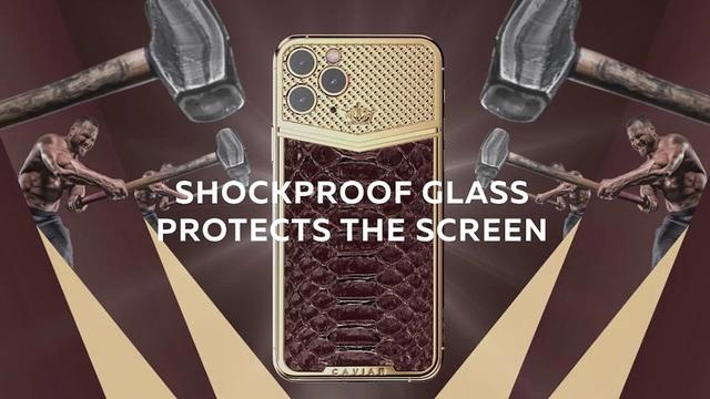 iPhone 11 Pro Max siêu sang, giá hơn 700 triệu đồng - 1