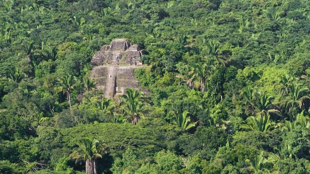 Người Maya cổ đại có thể đã làm thay đổi khí hậu từ hàng ngàn năm trước - 1