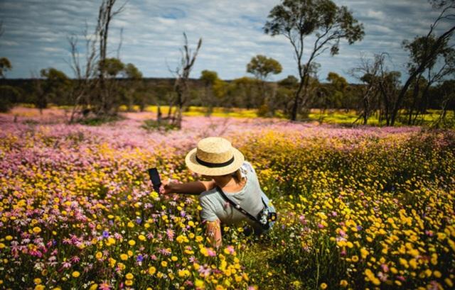 Mùa xuân đẹp như tranh vẽ ở phía bên kia trái đất - 7