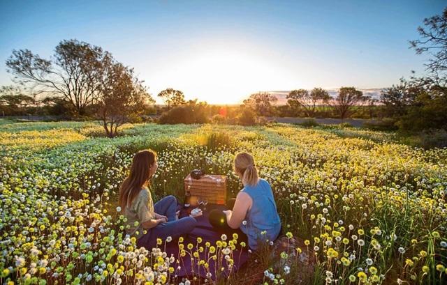 Mùa xuân đẹp như tranh vẽ ở phía bên kia trái đất - 10