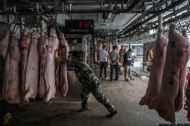 Bí mật bên trong kho dự trữ thịt lợn chiến lược của Trung Quốc - 3